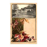 330. Rücklosliste der Fernauktion - Ansichtskarten