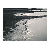 341. Gelaufene Fernauktion - Fotografie