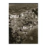 376. Gelaufene Fernauktion - Fotografie