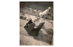 35. Gross-Auktion - Fotografie