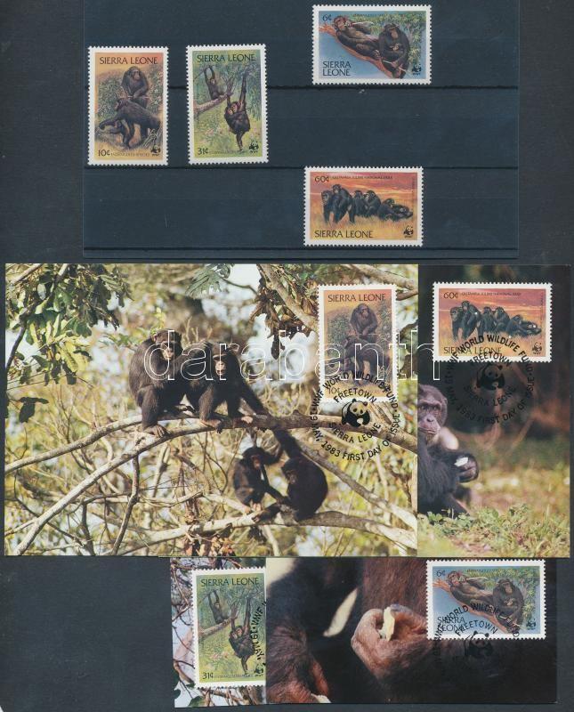 WWF Common Chimpanzee set + 4 CM + 4 FDC, WWF Közönséges csimpánz sor + 4 CM + 4 FDC-n