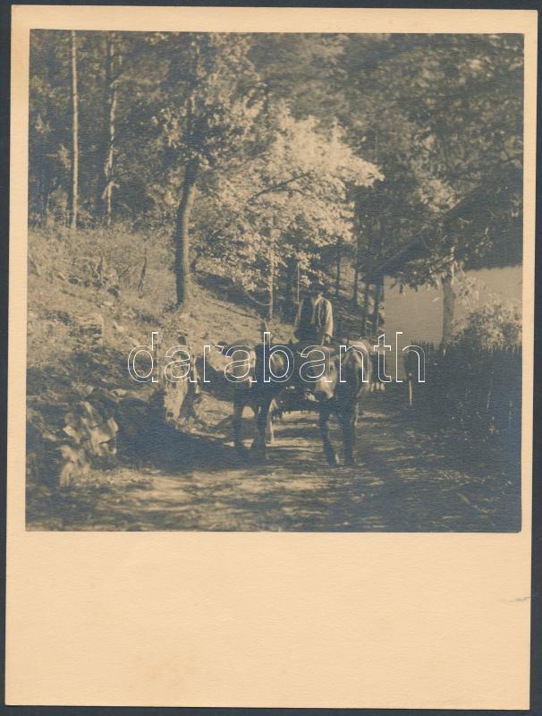 cca 1937 Thöresz Dezső (1902-1963) jelzés nélküli vintage fotóművészeti alkotása, 17x17 cm-es képméret, 24x18 cm-es fotópapíron