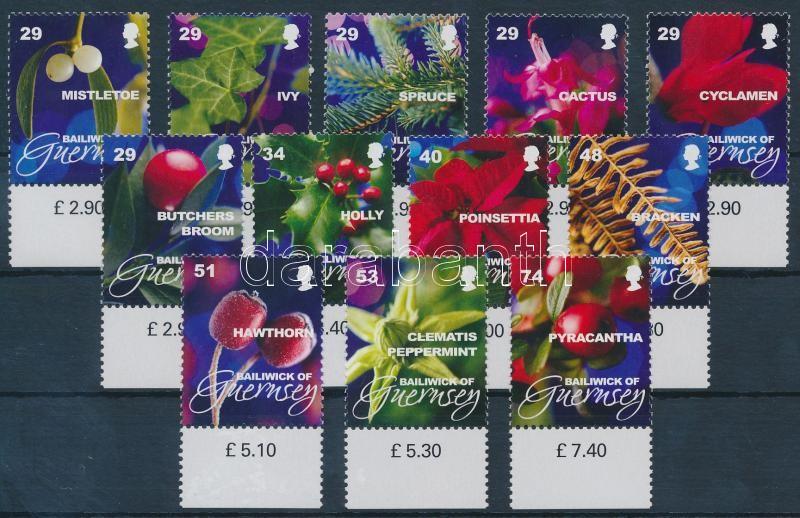 Christmas Plants margin set Karácsonyi növények ívszéli sor
