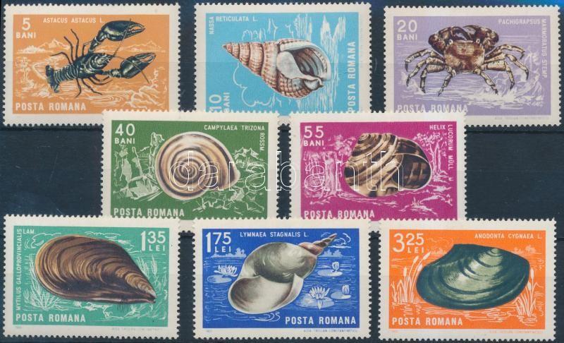Shellfish and crustaceans set, Kagylók és rákok sor