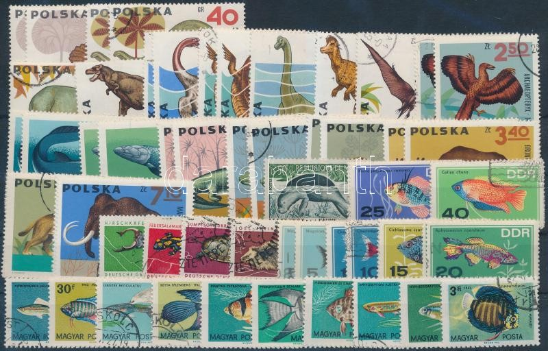 1956-1969 Fishes and reptiles 15 diff issues with sets, 1956-1969 Halak és hüllők motívum 15 db klf kiadás, közte teljes sorok, 2 db stecklapon
