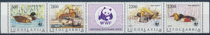 WWF: Wild Duck set in stripe of 5, WWF: Vadkacsák sor 5-ös csíkban