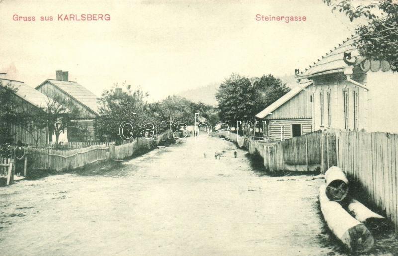 Carlsberg, Karlsberg; Steinergasse / street