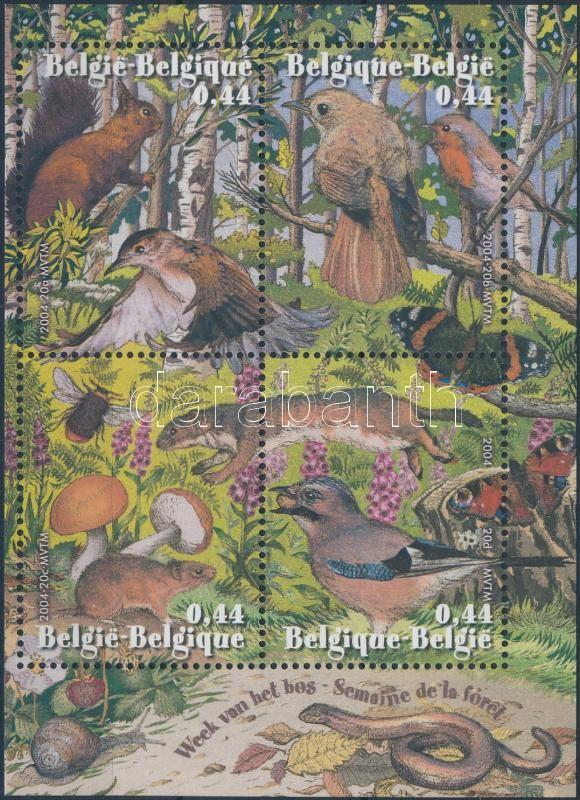Erdő - Állat blokk Forest - Animal block