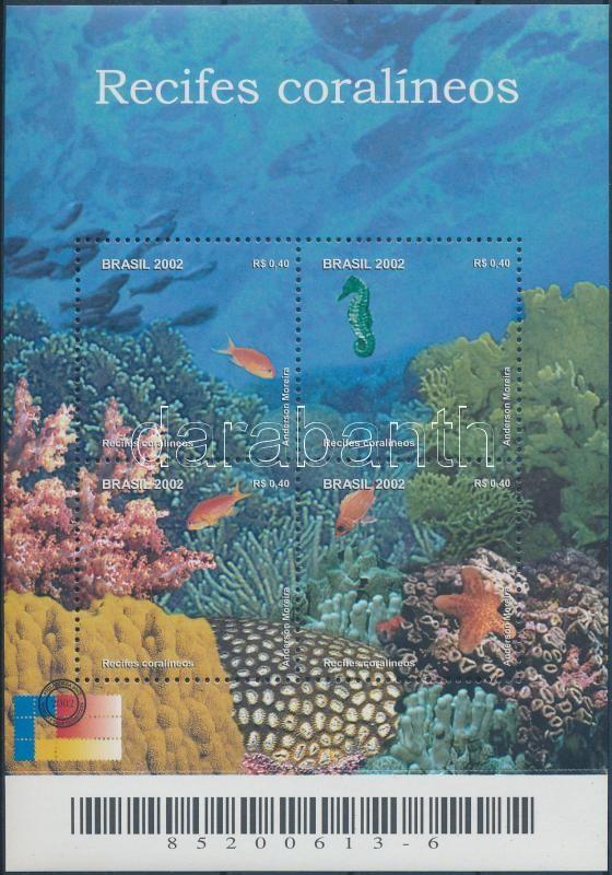 Coral reef block Korallzátony blokk