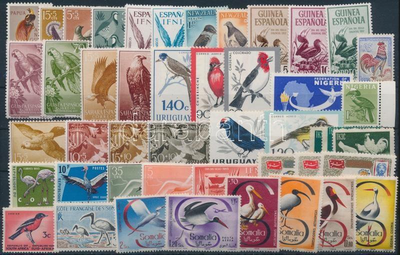 1952-1973 Bird 22 issues, 1952-1973 Madár motívum 22 klf kiadás, közte teljes sorok 2 stecklapon