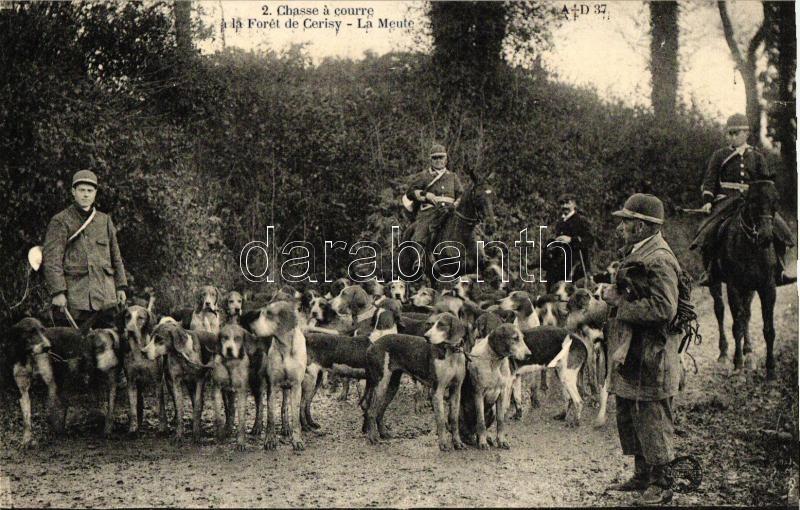 Chasse a courre a la Foret de Cerisy, La Meute / Hunters, dogs, Vadászat a Cerisy erdőben, vadászkutyák