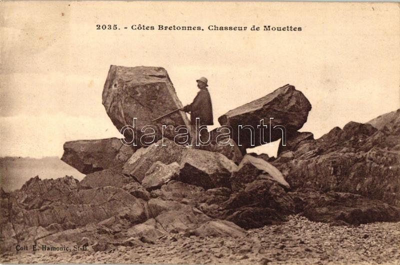 Cotes Bretonnes, Chasseur de Mouettes / Seagull hunter, Francia sirályvadász