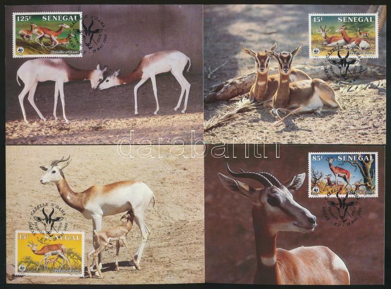 WWF: Gazella set + 4 CM + 4 FDC, WWF: Gazella sor + 4 db CM + 4 db FDC