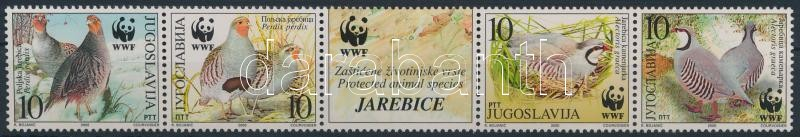 WWF stripe of 5, WWF ötöscsík