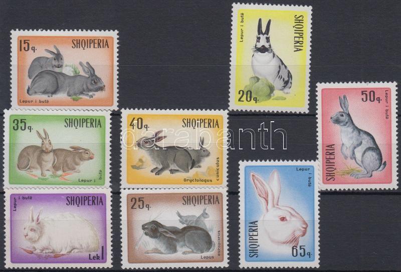 Rabbits set, Nyúl sor