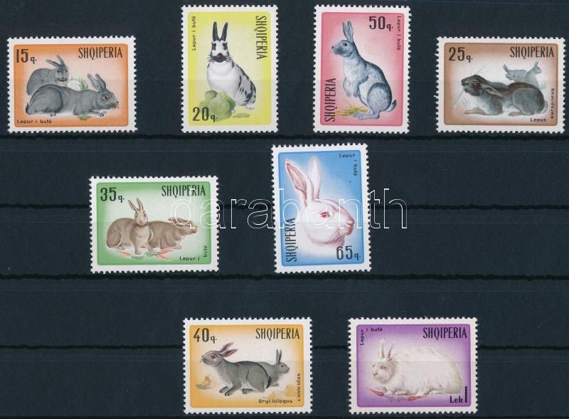 Rabbit set, Nyúl sor