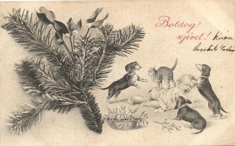 New Year, baby with dogs and cats, humour, Újév, baba kutyákkal és macskákkal, humor