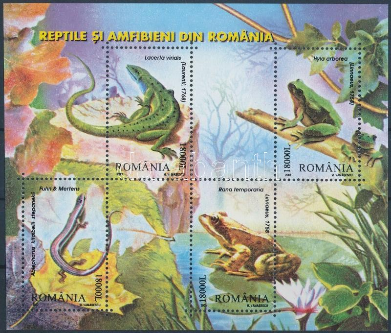 Reptiles and amphibians block, Hüllők és kétéltűek blokk