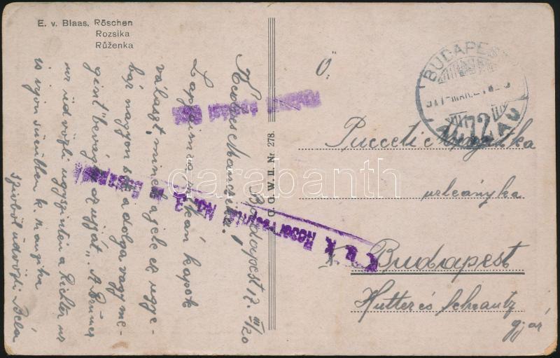"Austria-Hungary Field postcard, Tábori posta képeslap ""K.u.k. Reservespital No.3. in Budapest"" + ""Katonai ápolási ügy."""