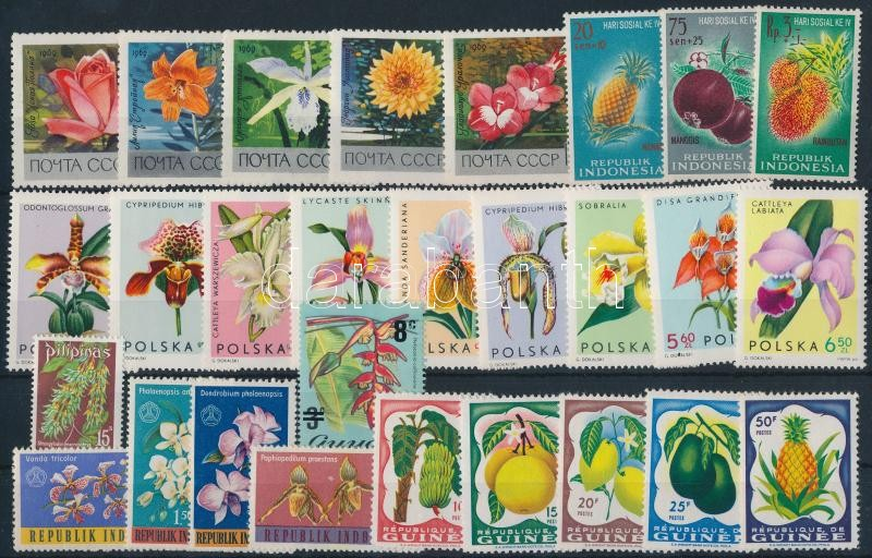 1959-1975 Flowers and fruits 28 stamps, 1959-1975 Virágok és gyümölcsök motívum 28 db bélyeg, közte teljes sorok