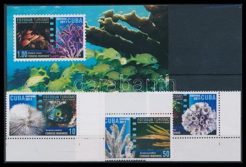 Corals 3 corner values + block, Korallok vízalatti fotózása 3 ívsarki érték + blokk