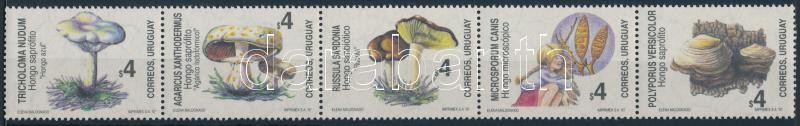 Mushrooms set stripe of 5, Gombák sor ötöscsíkban
