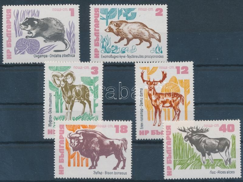 Animals set, Állatok sor