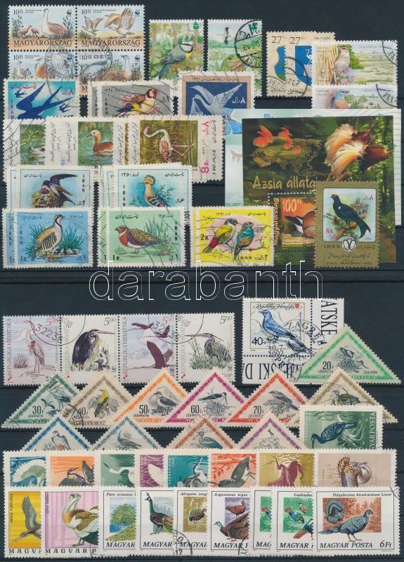 Bids 99 stamps and 2 blocks, Madár motívum 99 db bélyeg és 2 blokk 3 stecklapon