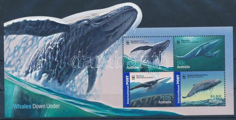 WWF: Whales block, WWF: Bálnák blokk