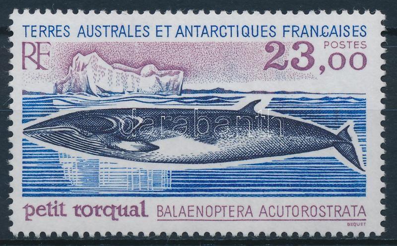 Bálna sor záróérték, Whale sert closing value