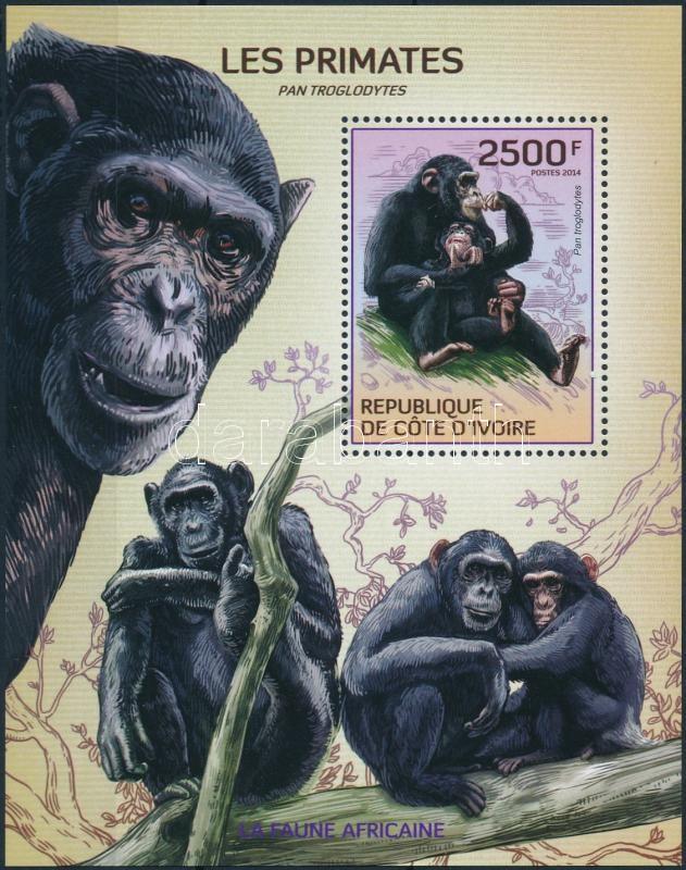 Monkey block, Majmok blokk
