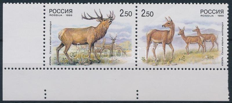 Deer corner pair, Szarvas ívsarki pár