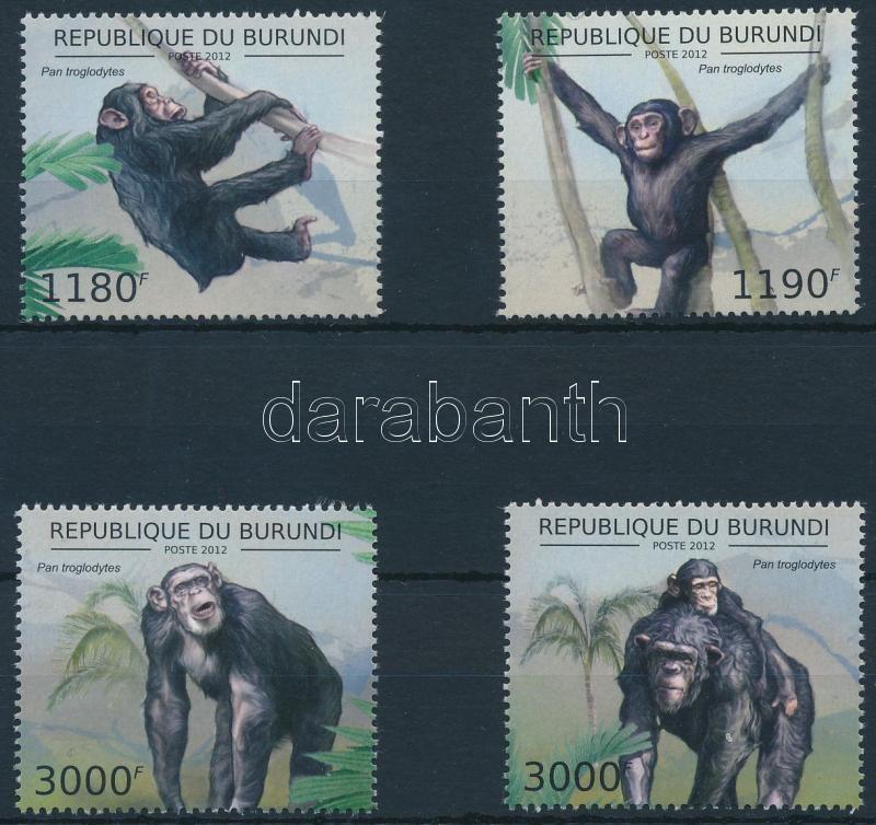 Chimpanzee set, Csimpánz sor