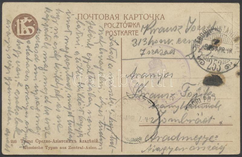 """Austria-Hungary Field postcard, Tábori posta képeslap """"313 HONVÉD ... EZRED II. ZÁSZLÓALJ"""" + """"TP 253"""""""