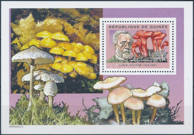 Gomba blokk, Mushroom block