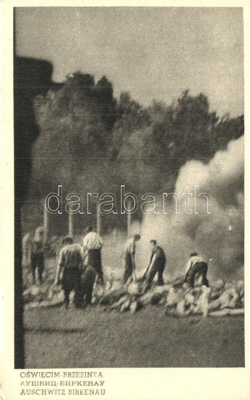 Auschwitz-Birkenau, Oswiecim; Cremation of corpses on pyres