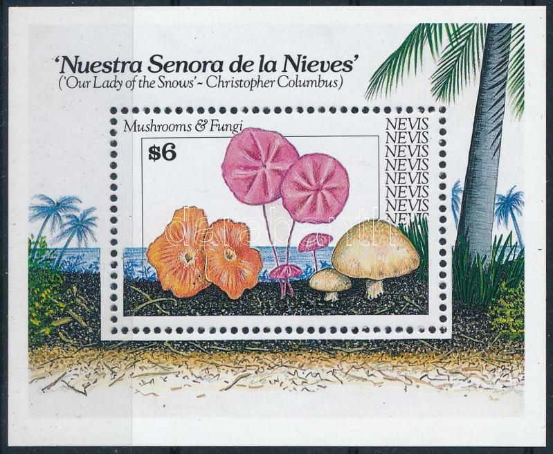 Mushrooms and sponges block, Gombák és szivacsok blokk