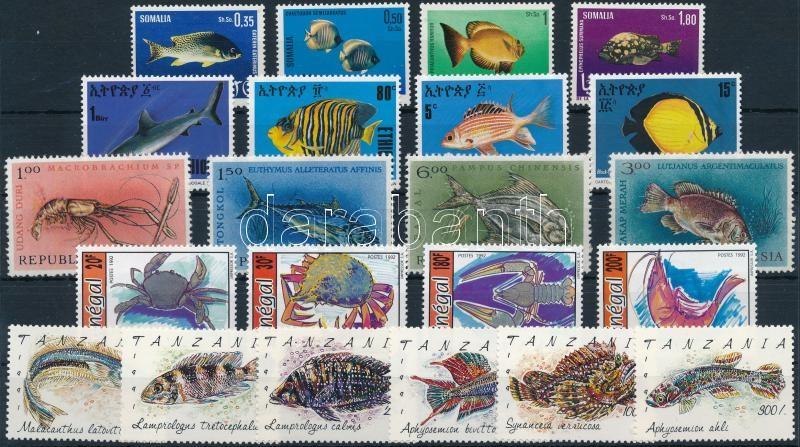 1963-1991 Marine animals 5 diff sets, 1 without closing stamp, 1963-1991 Tengeri állatok motívum 5 klf sor, egyiknek hiányzik a záróértéke
