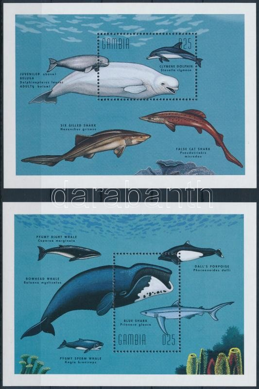 Whales and sharks block set, Bálnák és cápák blokksor