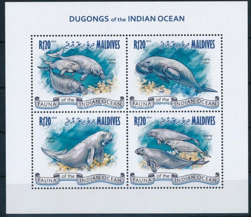 Dugong minisheet, Dugong kisív