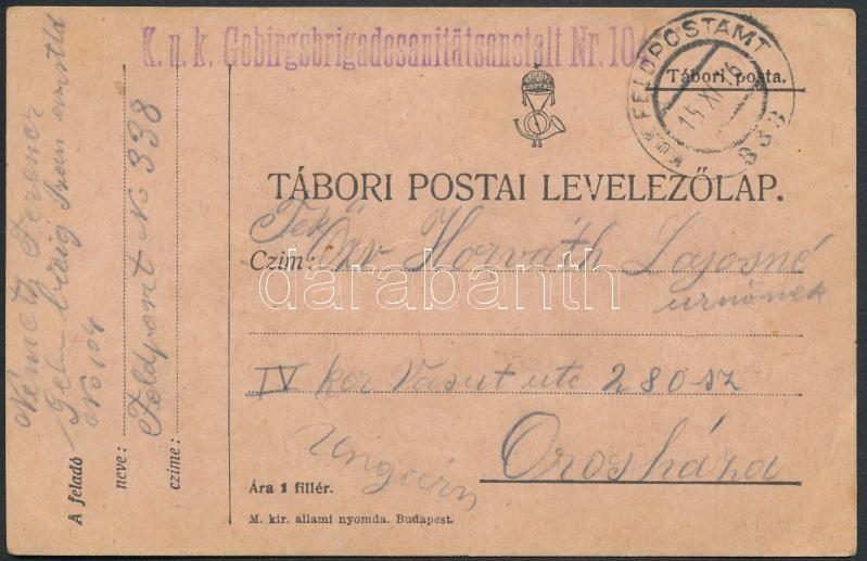 "Austria-Hungary Field postcard, Tábori posta levelezőlap ""K.u.k. Gebirgsbrigadesanitätsanstalt Nr. 104"" + ""FP 338"""