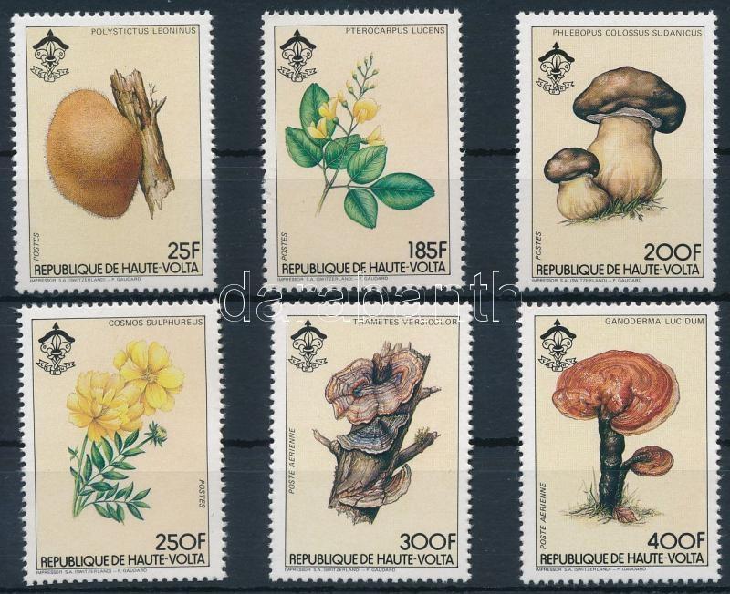 Mushroom; flower set, Gomba; virág sor