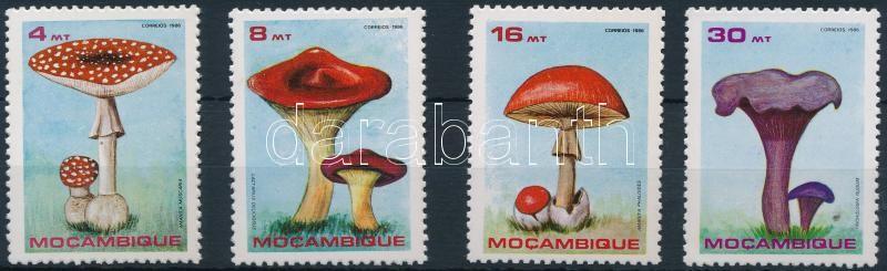 Mushroom set, Gomba sor