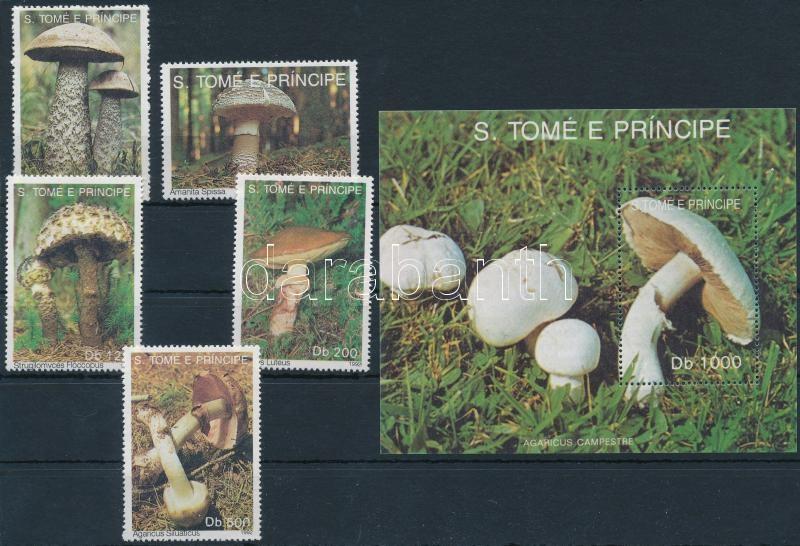 Gomba sor + blokk, Mushroom set + block