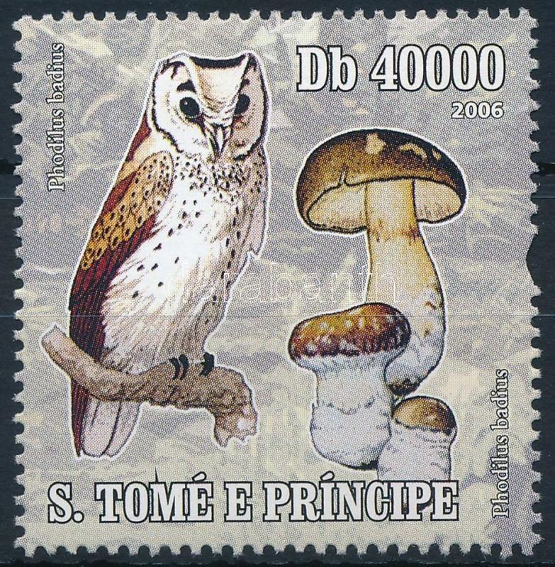 Mushroom, Gomba