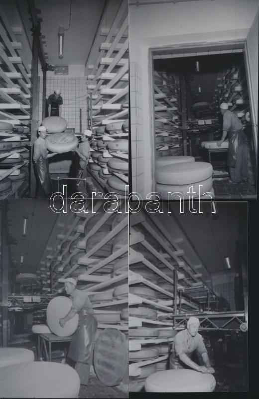 1969 Fót, Sajt üzem, 5 db vintage negatív (6x9 cm) Kotnyek Antal (1921-1990) fotóriporter hagyatékából, és az ezekről készített mai nagyítások, 15x10 cm