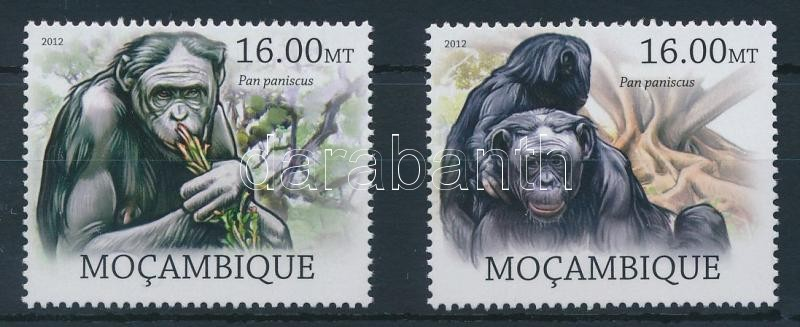 Monkies set 2 values, Majom sor 2 értéke