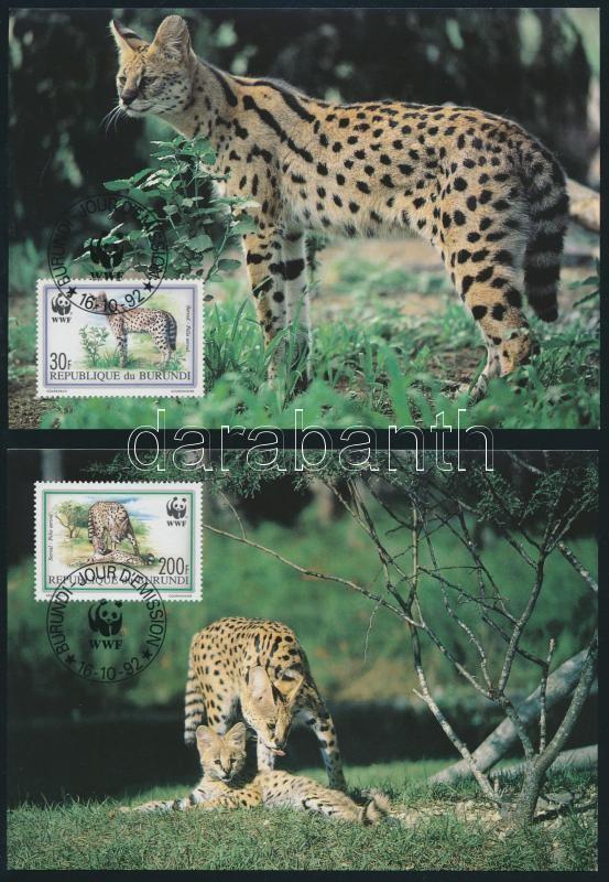 WWF: Serval set on 4 CM, WWF: Szervál sor 4 db CM-en