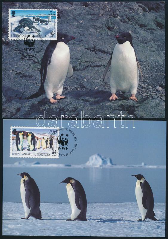 WWF: Seals and penguins on 4 CM, WWF: Fókák és pingvinek 4 érték 4 db CM-en