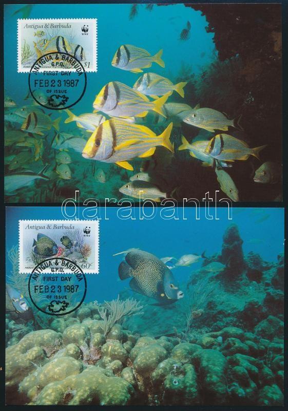 WWF: Halak sor 4 db CM-en, WWF: Fish set on 4 CM